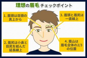 理想の眉毛のチェックポイント